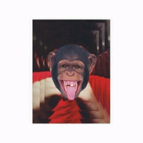 bagusarield's avatar
