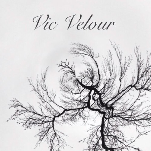 Vic Velour's avatar
