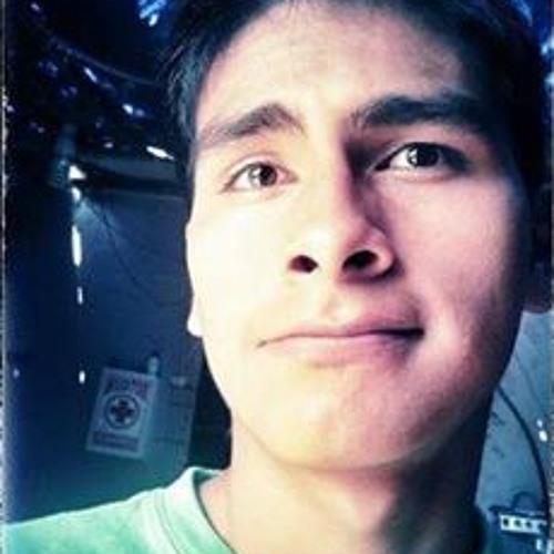 Fernando Ulloa Pariachy's avatar