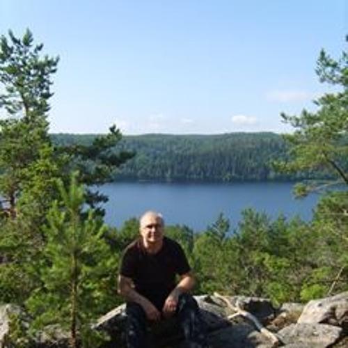 Vladimir Zeynalov's avatar