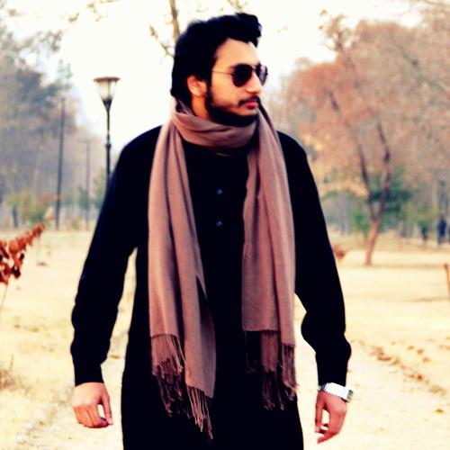Syed Hammad Ali 1's avatar