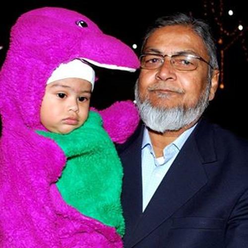 Muhammad Zeeshan Lari's avatar