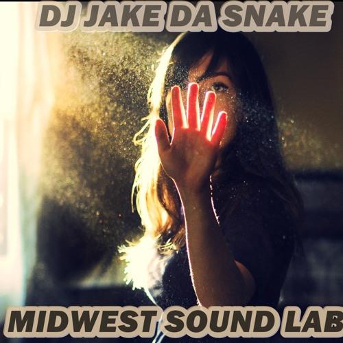 dj jake da  snake clowney's avatar