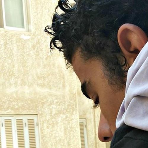 Ahmed Fakher 1's avatar