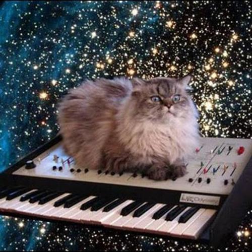 CatDaddy's avatar