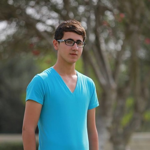 محمد نصر الله ., يا زايرين النبي