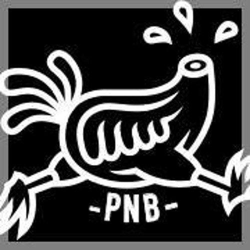 PNB Events's avatar