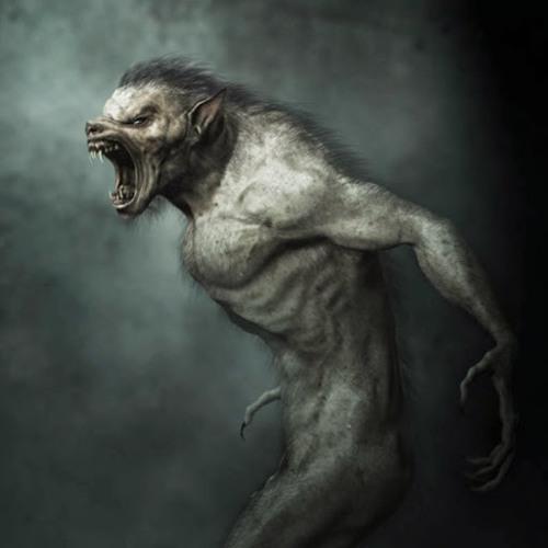 Antoine Sauvage !'s avatar