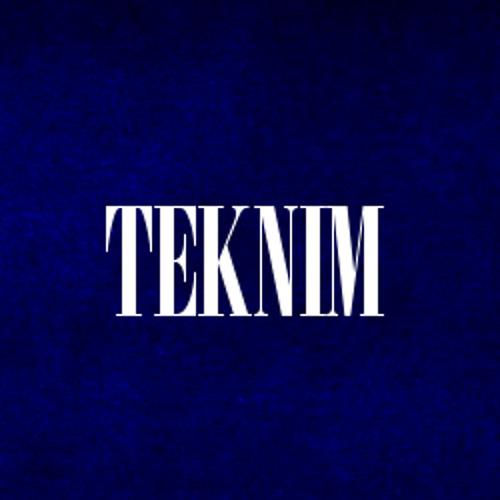 TEKNIM ◕.◕'s avatar