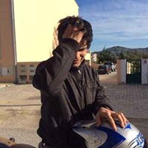 João Ferreira 238's avatar