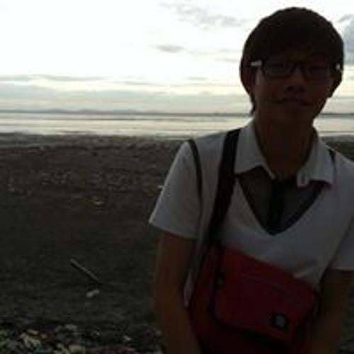 Ding Xuan Chua's avatar