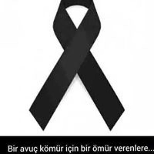 Doğaner Atalay's avatar