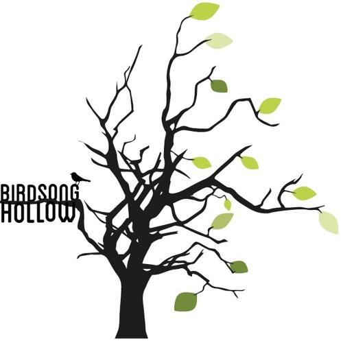 Birdsong hollow's avatar