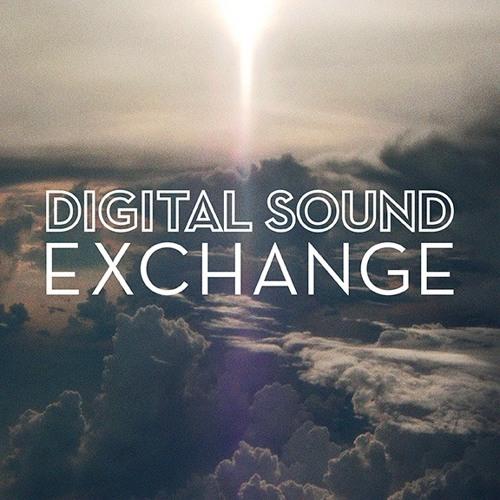 Digital Sound Exchange's avatar