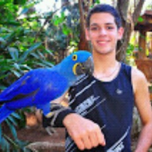 Daniel Henrique Costa 2's avatar