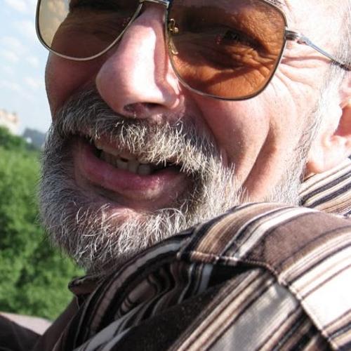 Mikhail Mitropolskiy's avatar