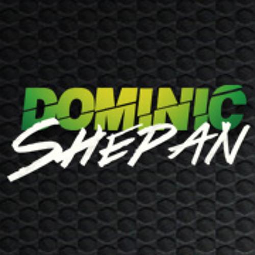 Dominic Shepan's avatar