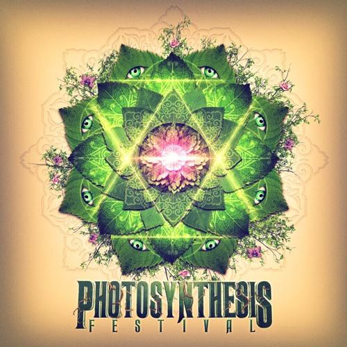 Photosynthesis Festival's avatar