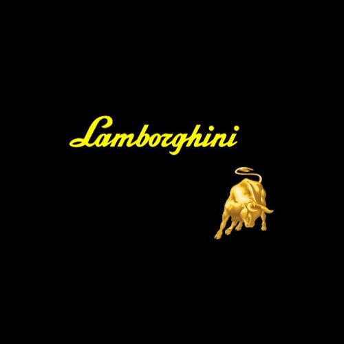 Lalo Castillo 11's avatar