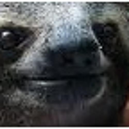 Dawid Grden's avatar