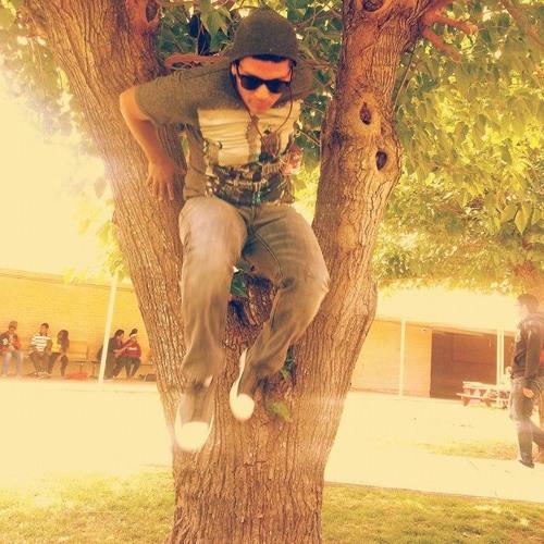 Gabriel Chavez 2's avatar