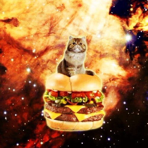Dubstep kat's avatar