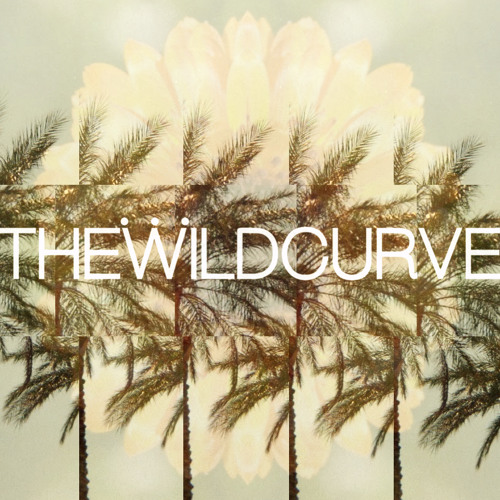 The Wild Curve's avatar