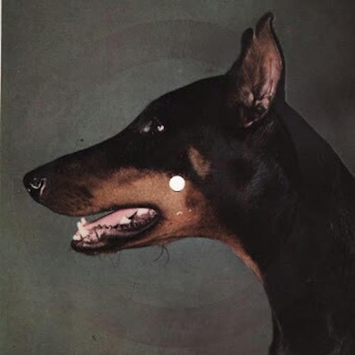 pokrus's avatar