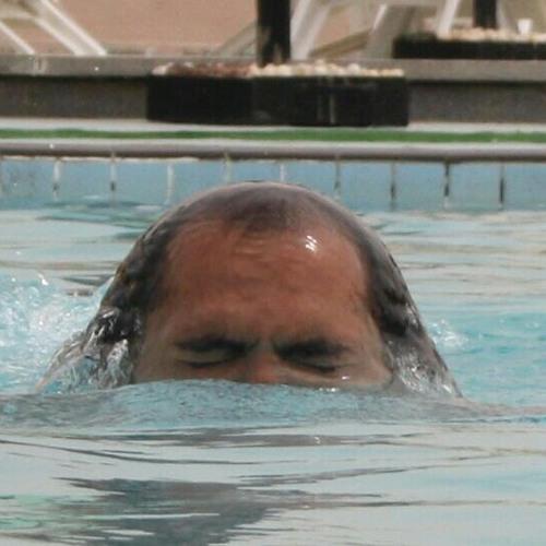 gghonim's avatar