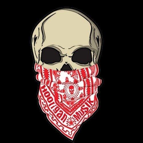 Anakey HooliganMuSIK's avatar