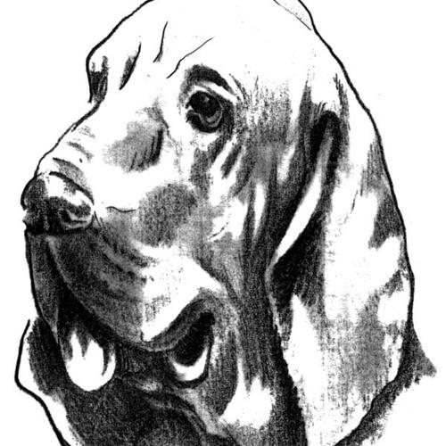 caesar sancezz's avatar