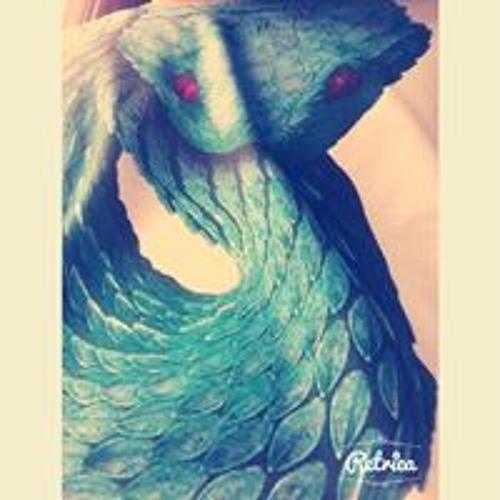 user989300884's avatar