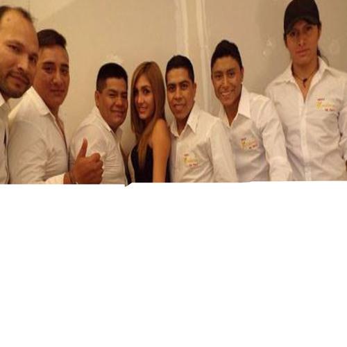 Grupo Kocaleros del Peru's avatar