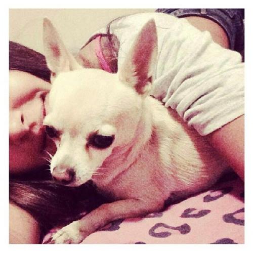 Evelyn Arango Sánchez's avatar