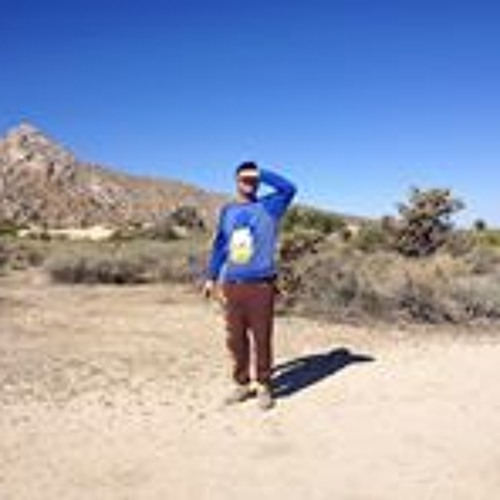 Adam Irving Rosenberg's avatar