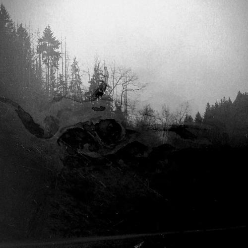 orez-debrede's avatar