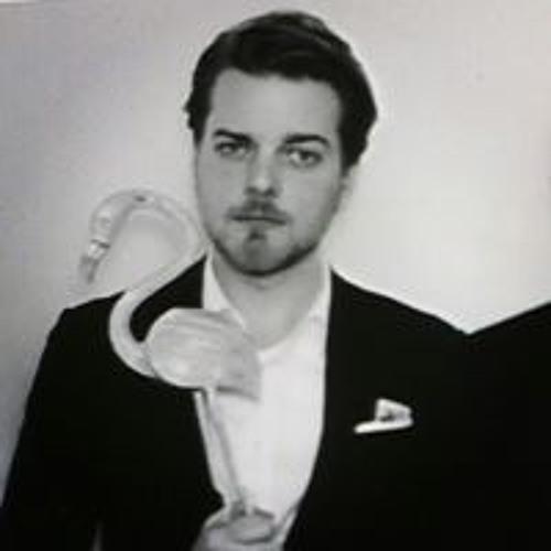 Johan Kesselmark's avatar