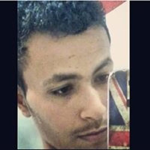 Ibraheem M Haidara's avatar