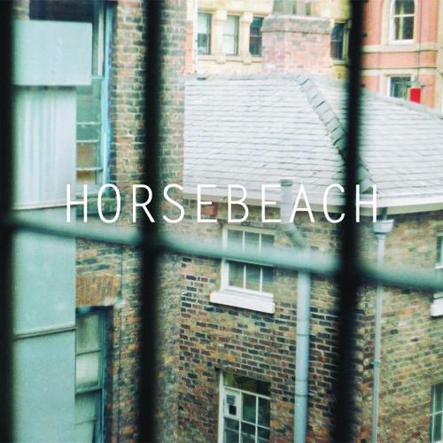 Horsebeach's avatar