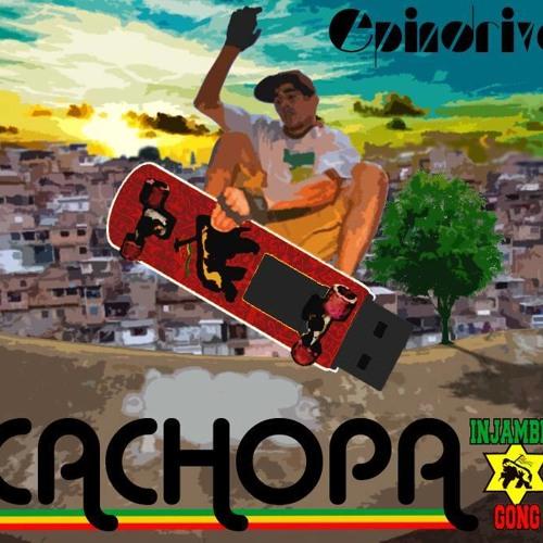 cachopa's avatar