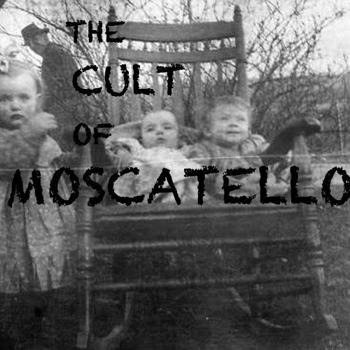The Cult Of Moscatello's avatar