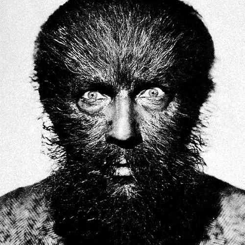 Dario Zenker's avatar