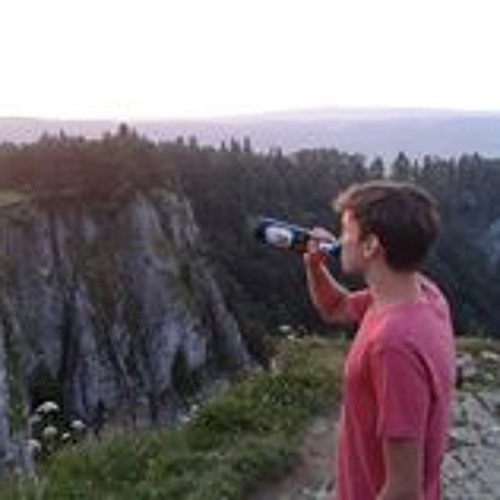 Wolfgang Baumgartner 2's avatar
