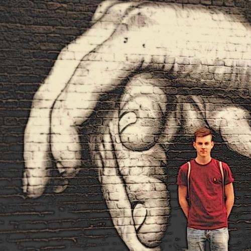 Nils Js's avatar