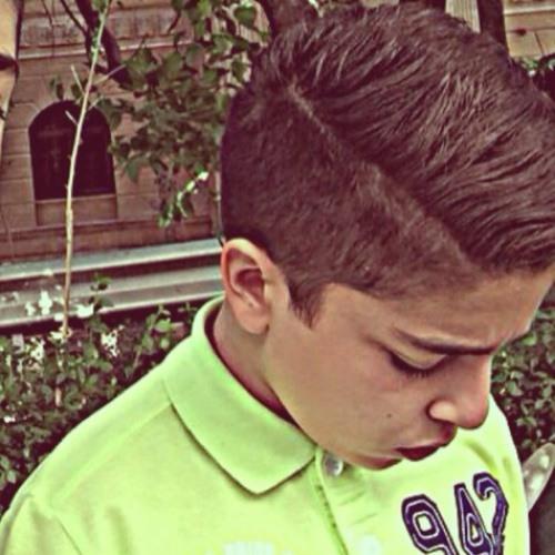 shayan se's avatar