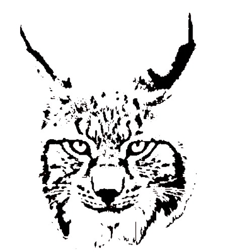 White Lynx Production's avatar