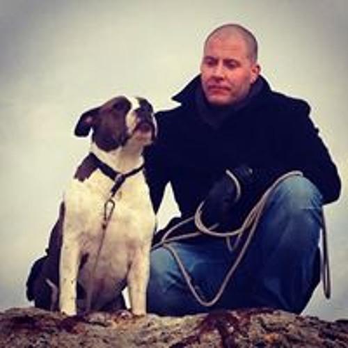 Dan Ravn's avatar