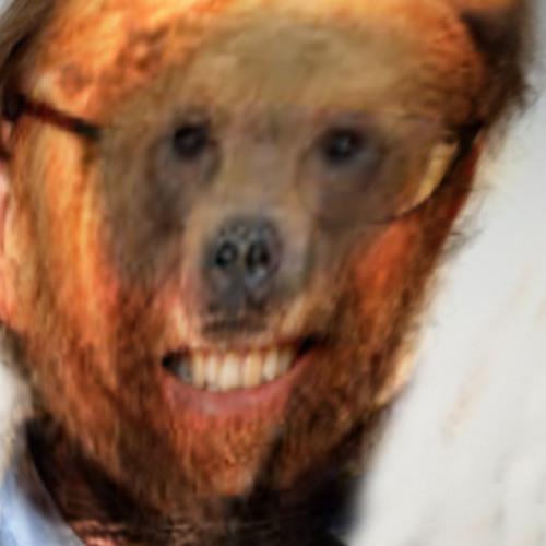 Björn Canopus Hilsfangr B's avatar