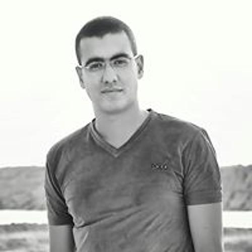 mahmoud behery's avatar