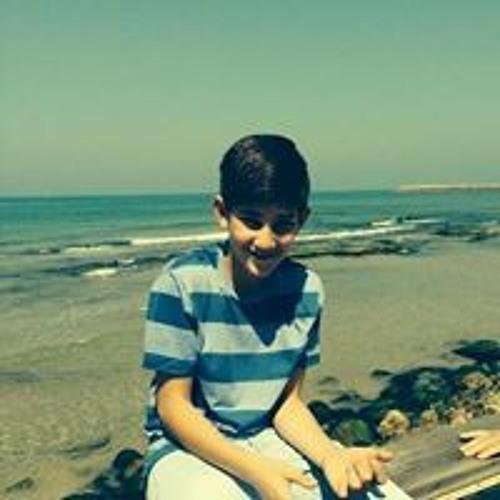 Eitan Snir's avatar